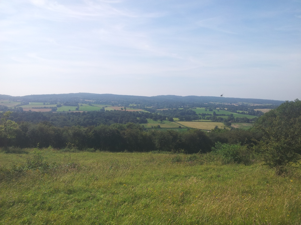 Centurion Running North Downs Way 50: Race Report (6/6)