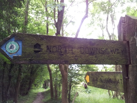 North Downs Way Signpost