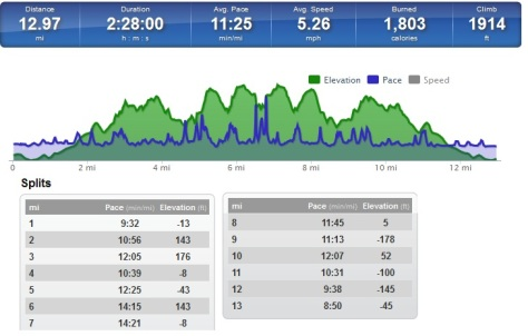 The stats from my run along the North Downs